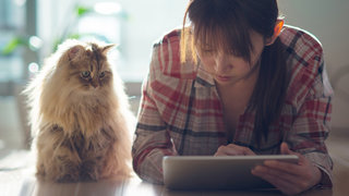 bad-news-cope-cat-ipad-worry