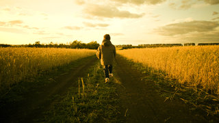 child-path-walking-field