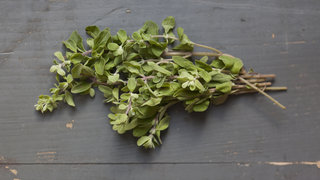 oregano-sprig-ingredient